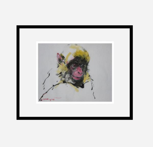 """""""Baby monkey"""""""