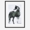 「振り向く馬」