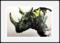 I love Rhinos!!