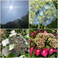 聖ニコライの日。夏の始まりです!