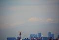 都会に浮かぶ富士