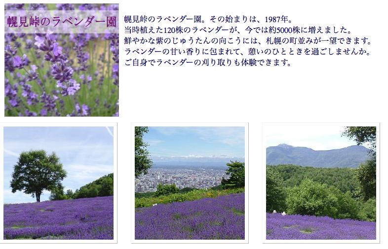 f:id:Kichikichi02:20190821013424p:plain