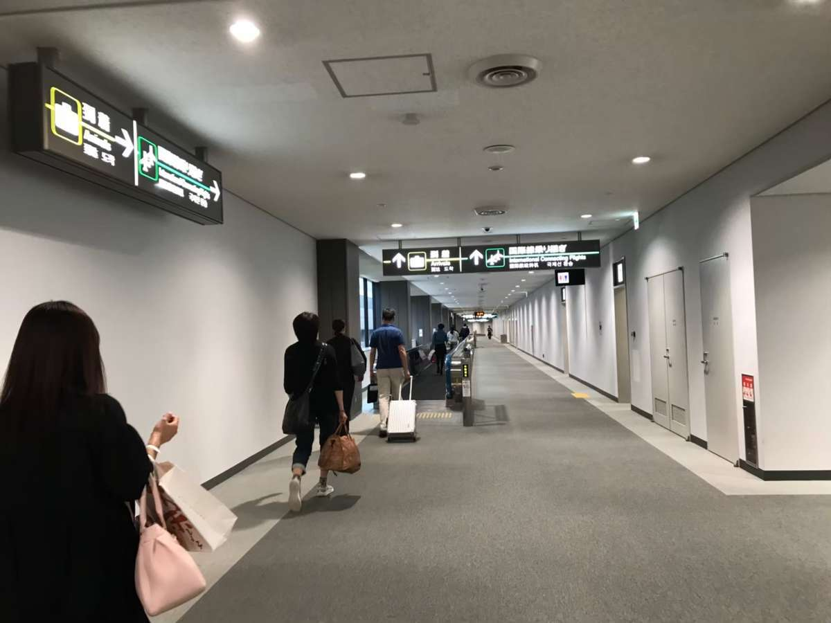 f:id:Kichikichi02:20191120175301j:plain