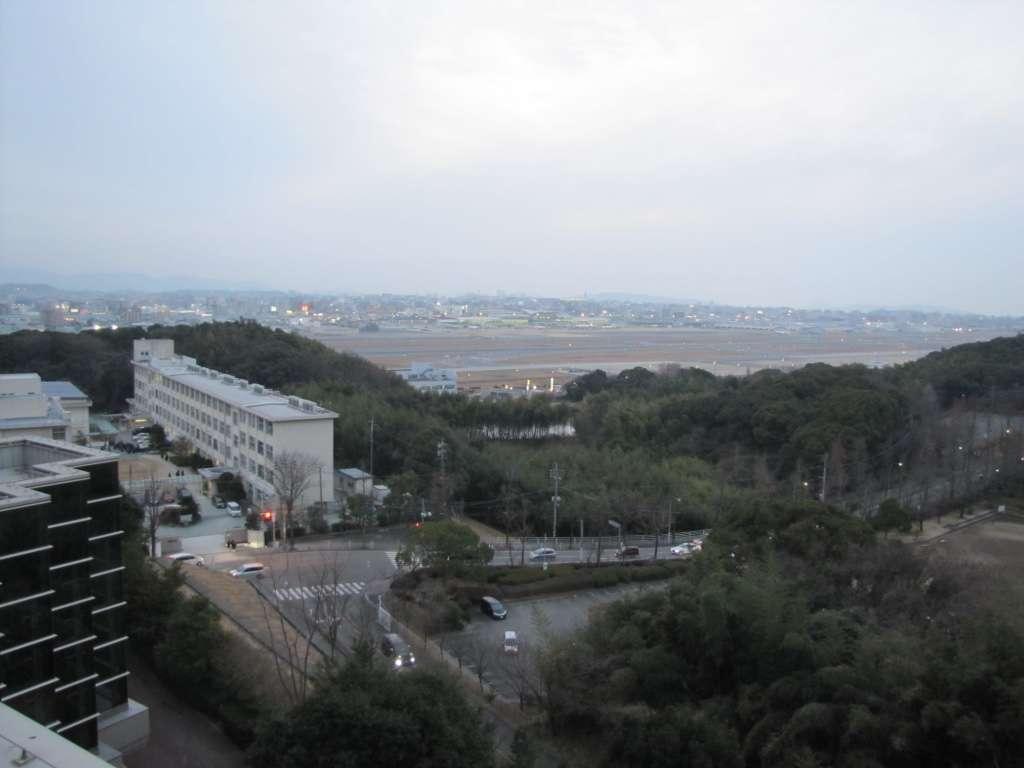 f:id:Kichikichi02:20200111205604j:plain
