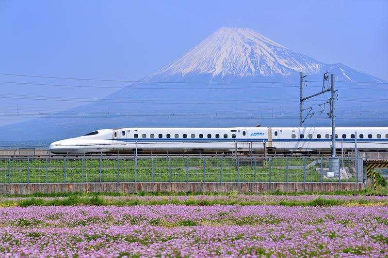 f:id:Kichikichi02:20200825143731j:plain