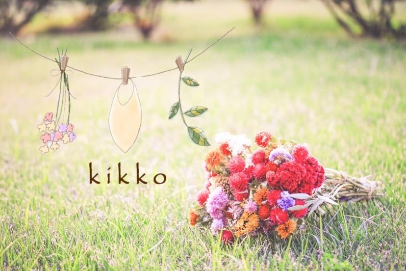 f:id:Kikko-bib:20180119151408j:plain