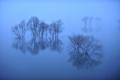 Blue fog elusive 北海道石狩郡当別町青山 当別ダム・ふくろう湖
