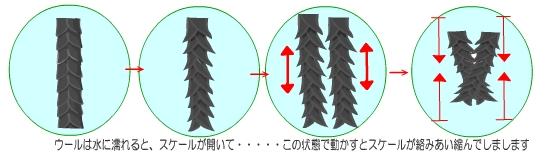 f:id:Kim-Fukutabi:20201010231840j:plain