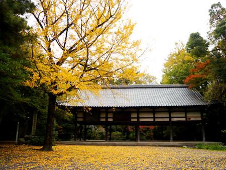 f:id:Kimono:20091122144051j:image