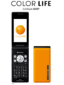 [Bluetooth][HSDPA(3.6Mbps)]840P