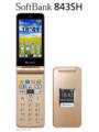 [HSDPA(7.2Mbps)][SoftBank3G][防水][防塵][かんたん携帯]843SH