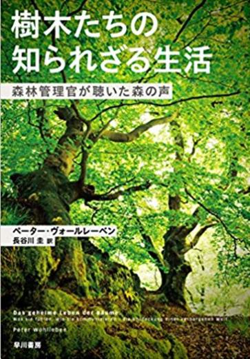 f:id:KinjiKamizaki:20190526142906p:plain
