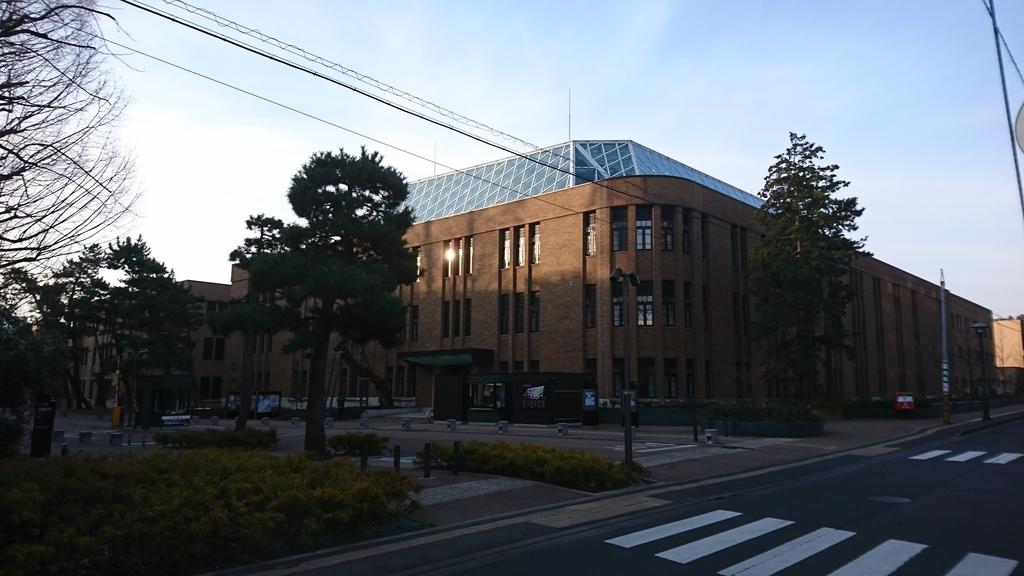 f:id:Kinokawaryokusan:20190310221055j:plain