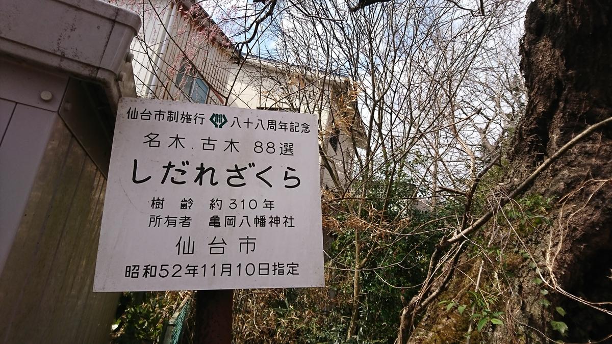 f:id:Kinokawaryokusan:20190407223042j:plain