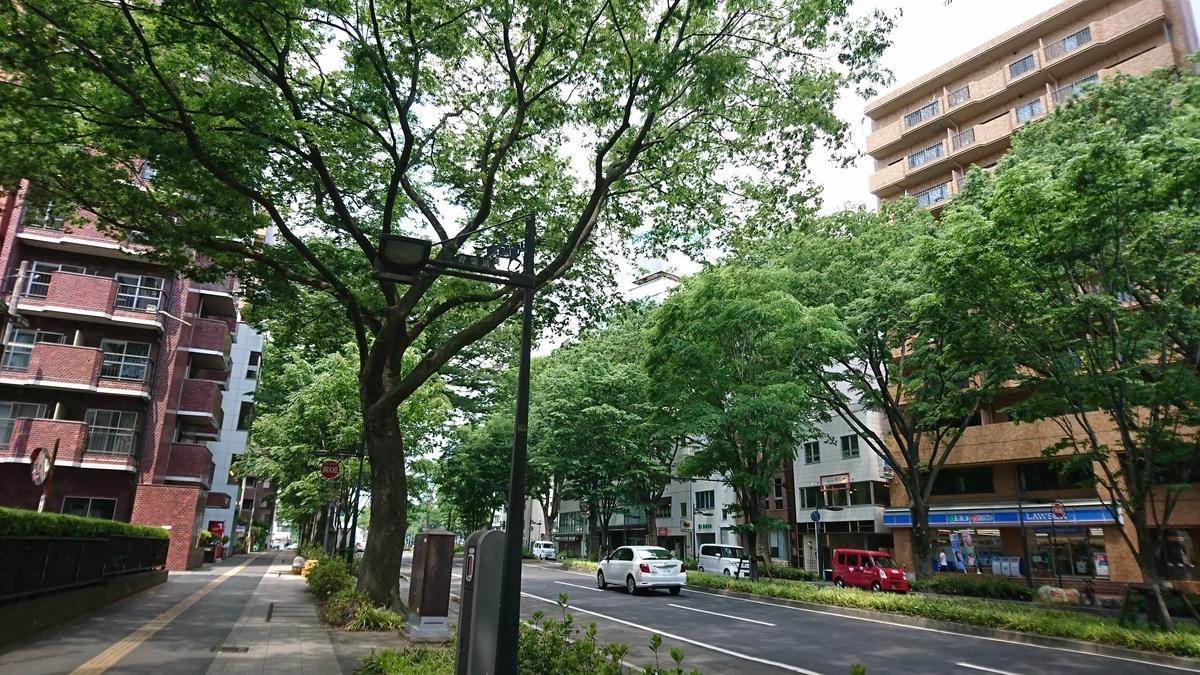 f:id:Kinokawaryokusan:20190602070423j:plain