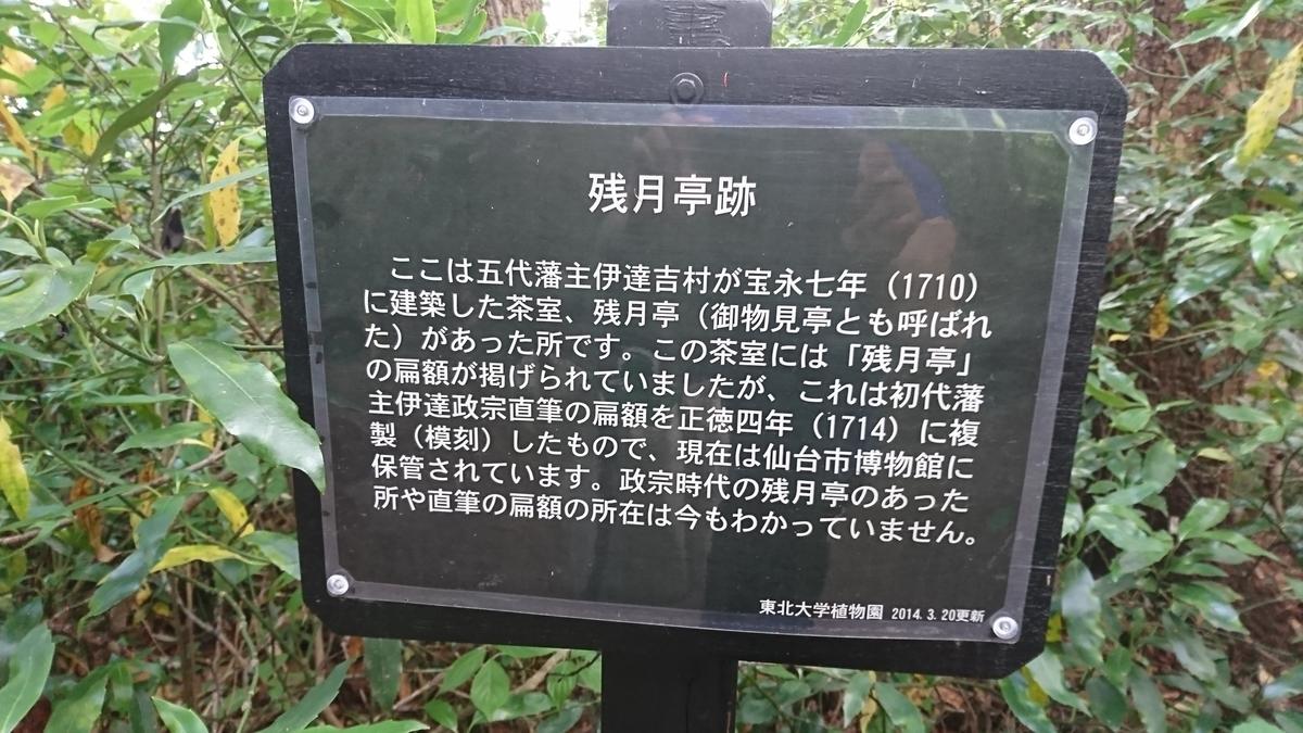 f:id:Kinokawaryokusan:20190609135345j:plain