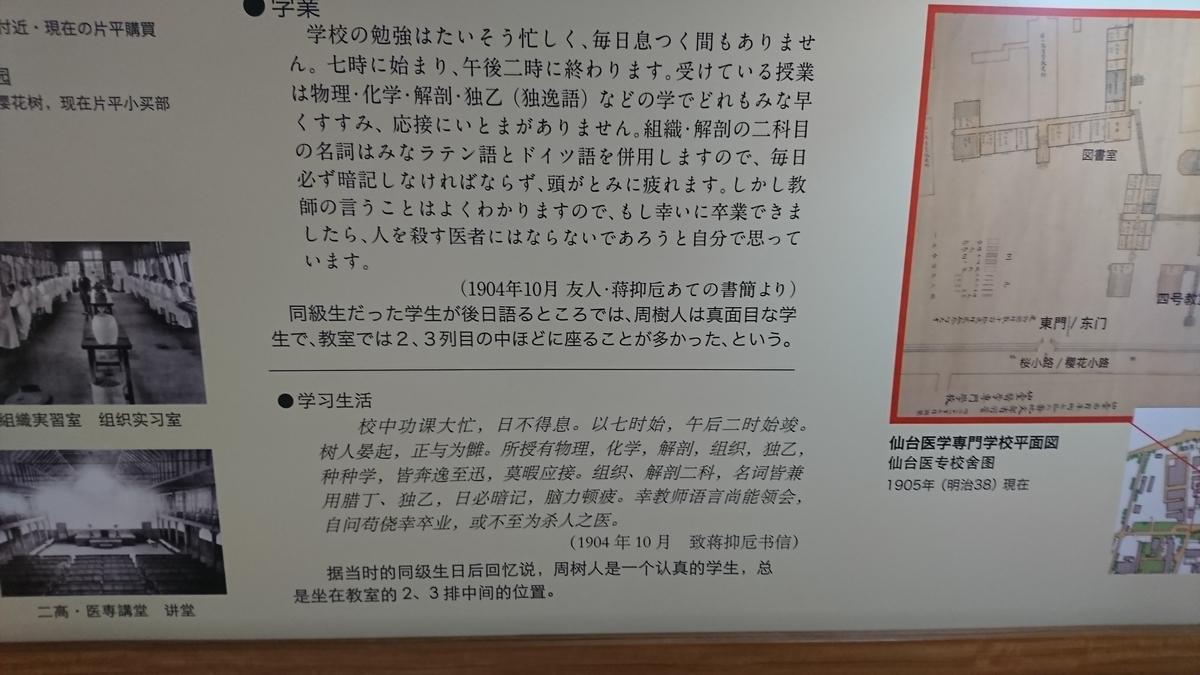 f:id:Kinokawaryokusan:20190707180703j:plain