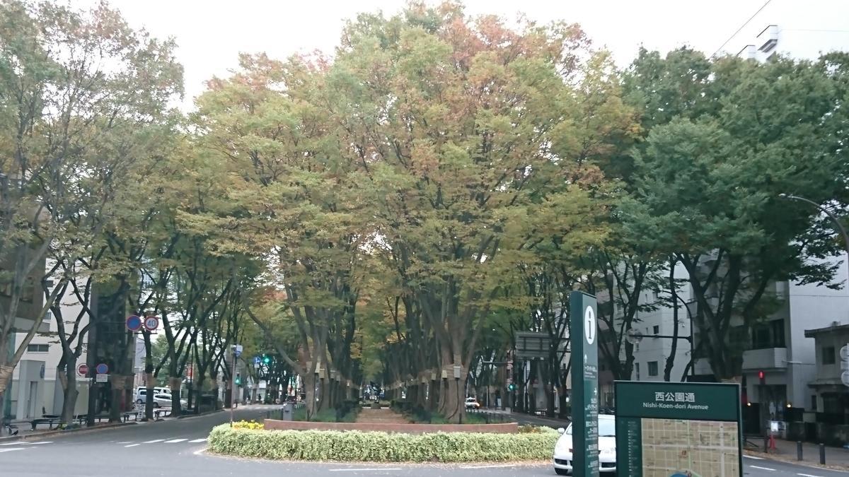 f:id:Kinokawaryokusan:20191109135002j:plain