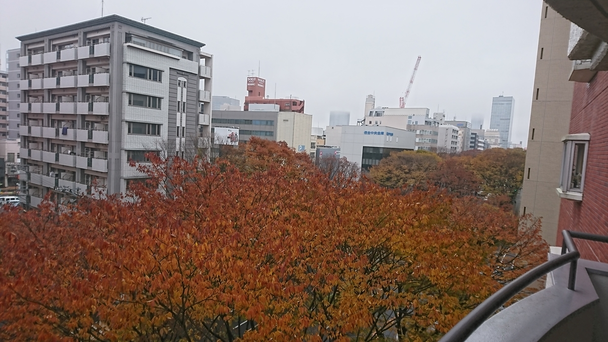 f:id:Kinokawaryokusan:20191124124551j:plain