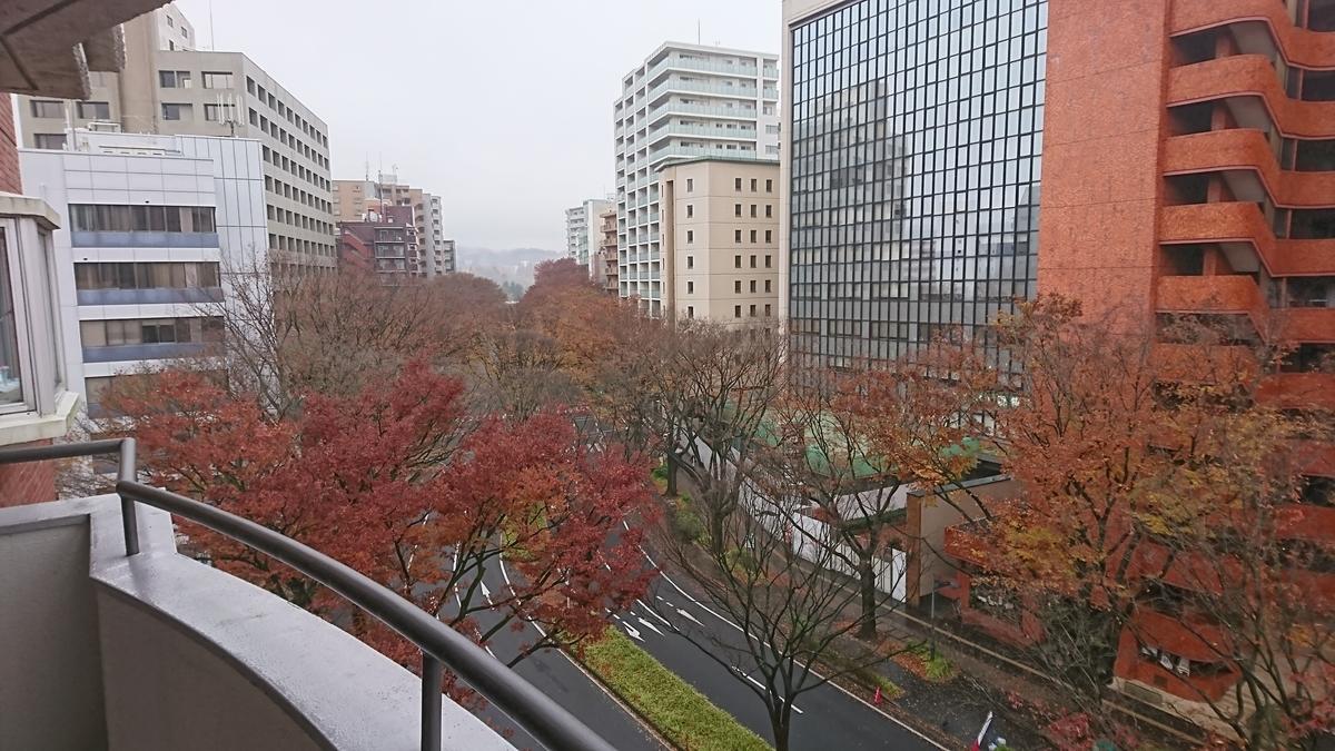 f:id:Kinokawaryokusan:20191124131604j:plain
