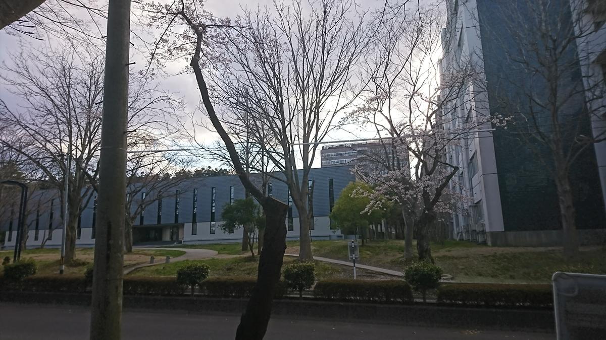 f:id:Kinokawaryokusan:20200405164928j:plain