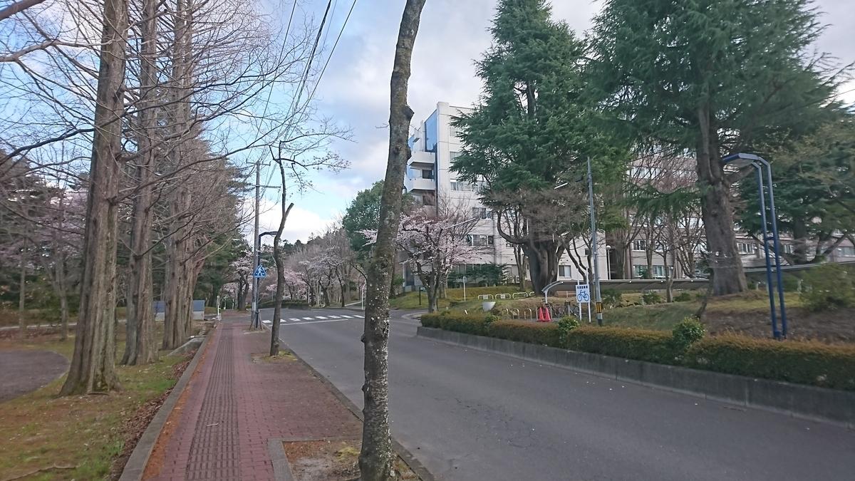 f:id:Kinokawaryokusan:20200405165017j:plain