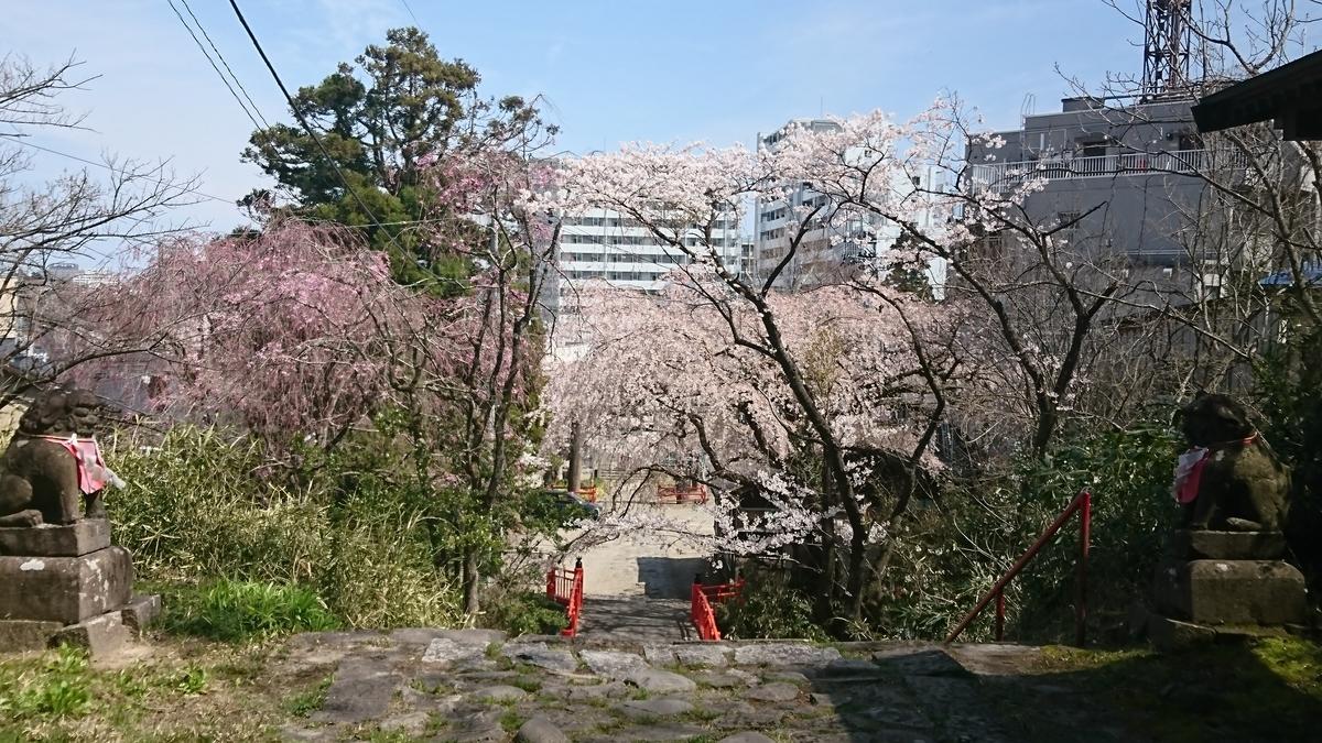 f:id:Kinokawaryokusan:20200413225026j:plain