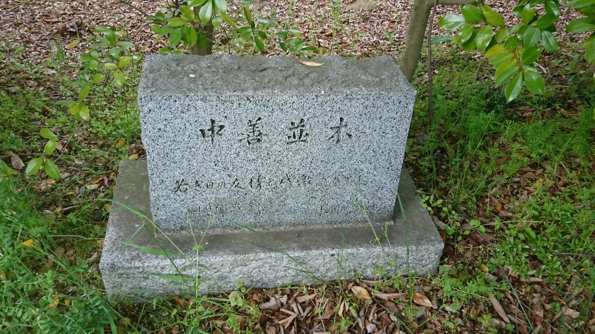 f:id:Kinokawaryokusan:20200505191521j:plain