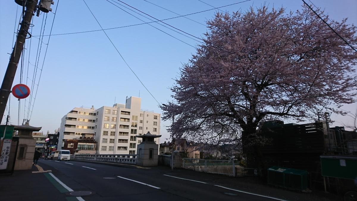 f:id:Kinokawaryokusan:20210404120049j:plain