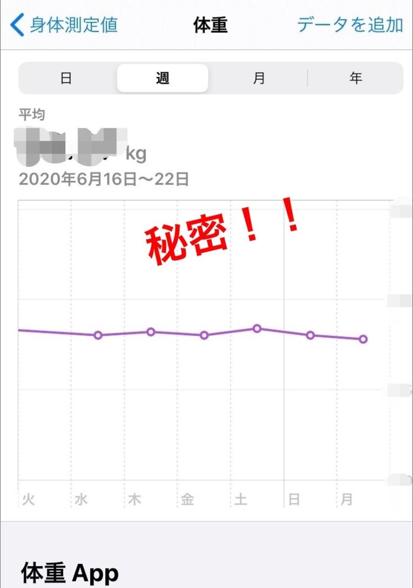 f:id:KirigirisuMax:20200628114010j:plain