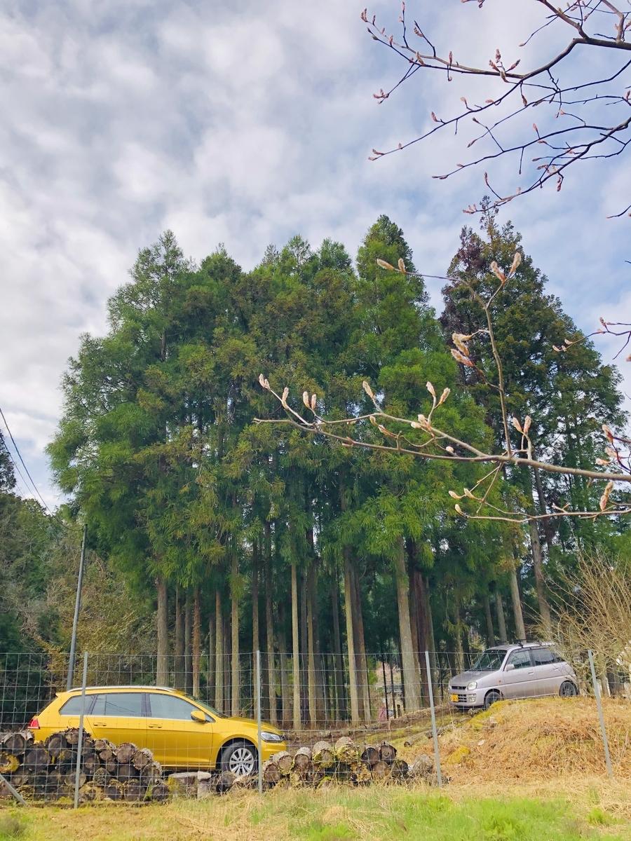 f:id:KishimotoTaro:20200427223643j:plain