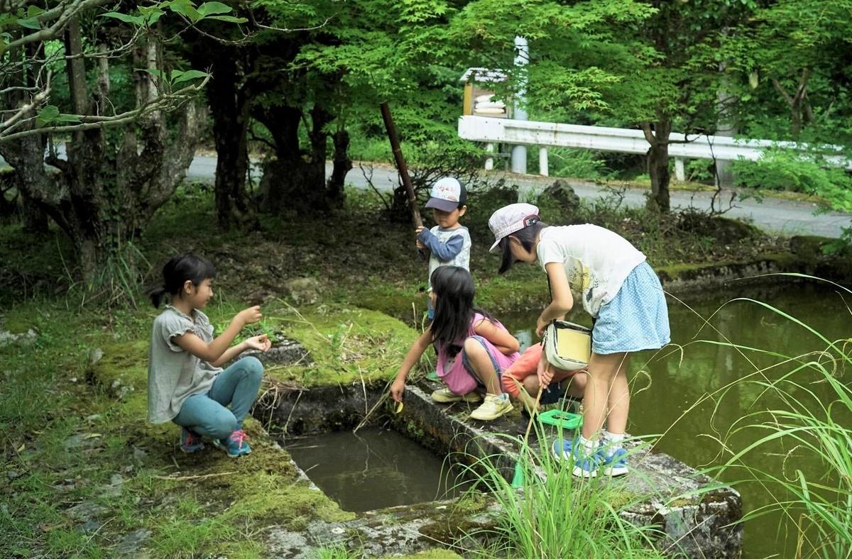 f:id:KishimotoTaro:20200704153137j:plain