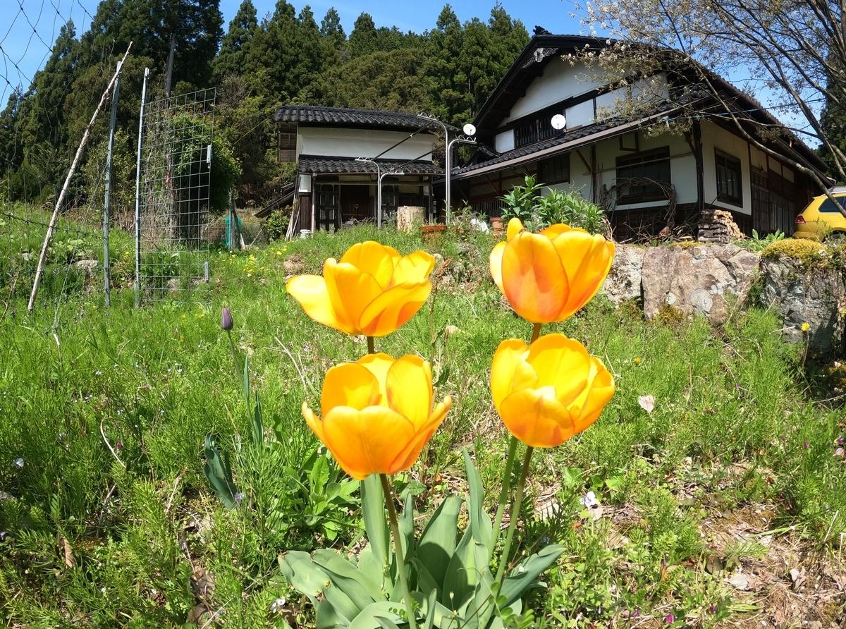 f:id:KishimotoTaro:20210428184302j:plain