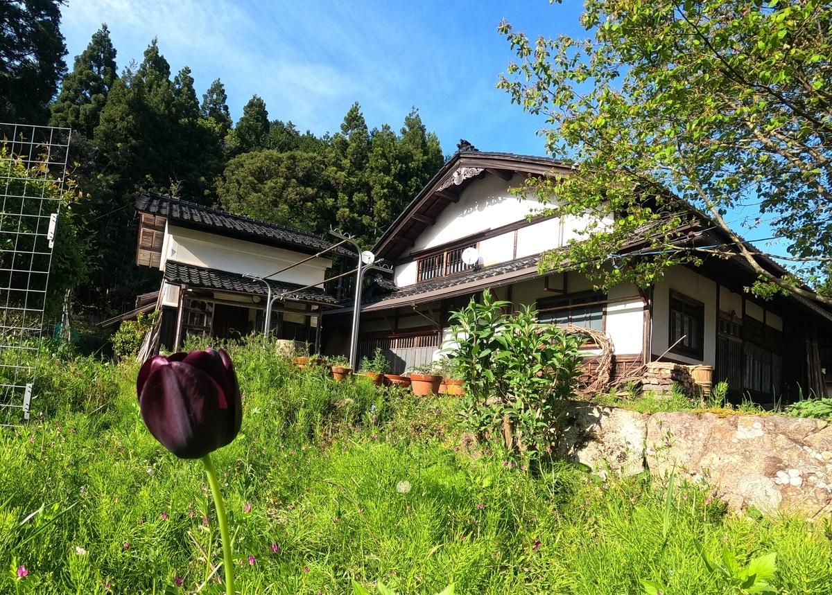 f:id:KishimotoTaro:20210428184637j:plain