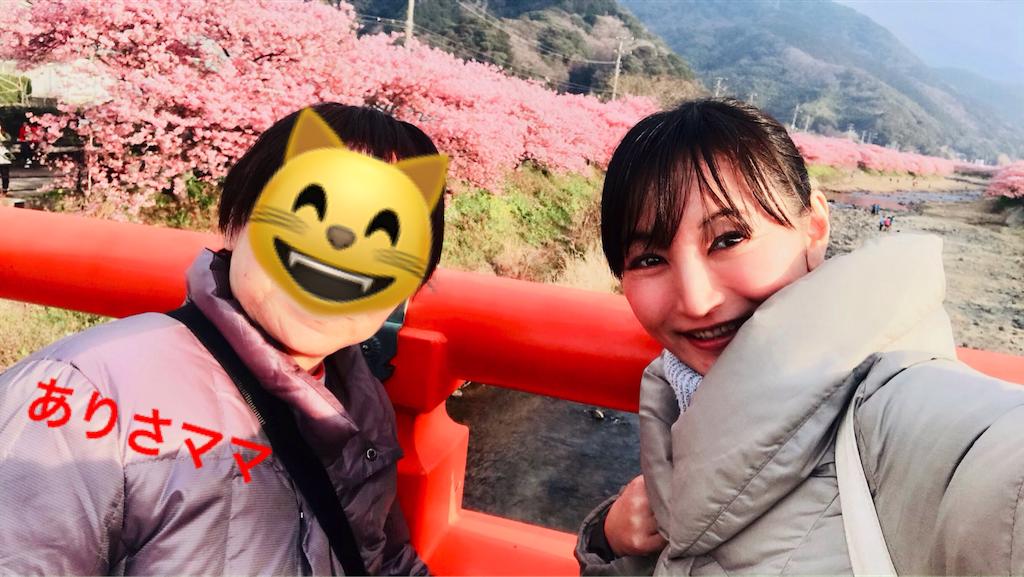 f:id:KizunaKiraKira:20190304040009p:image
