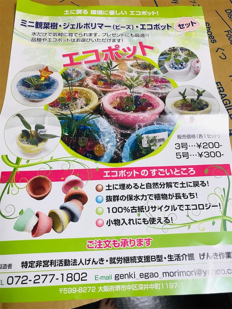 f:id:KizunaKiraKira:20190711025019j:image