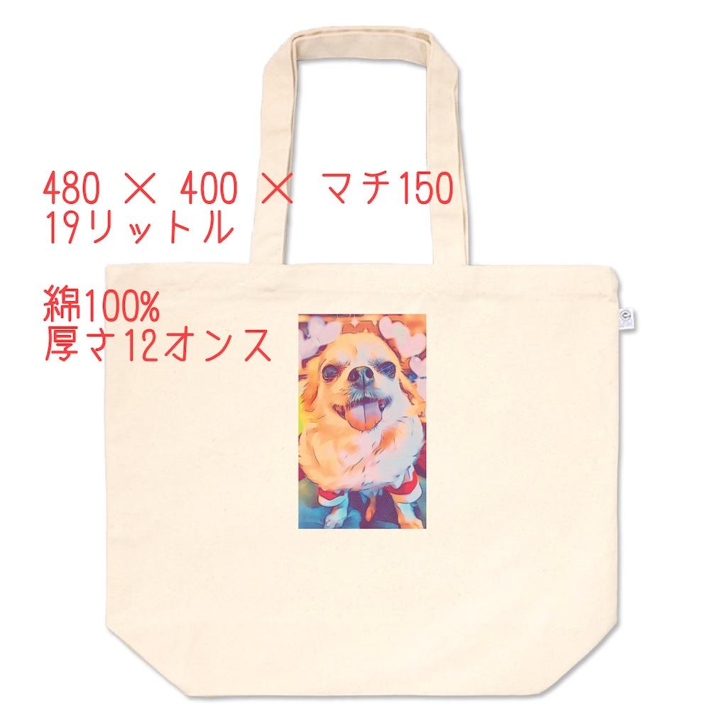 f:id:KizunaKiraKira:20210116230426j:image