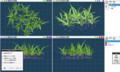 [program]ObjectComposit (Metasequoia Plugin)