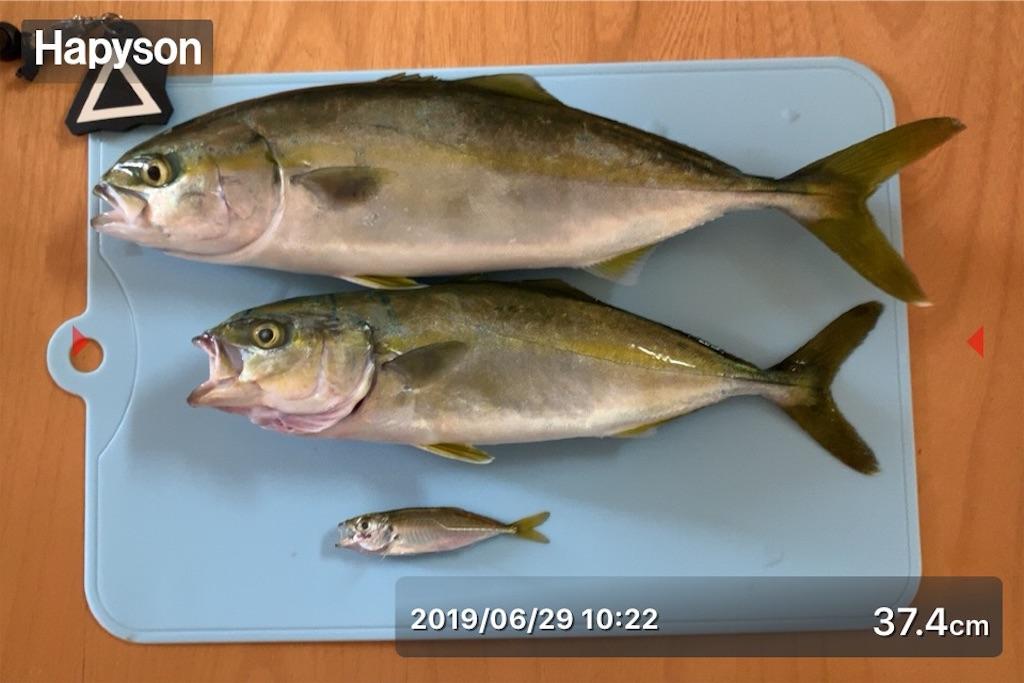 f:id:Kobe_Angler:20190630101209j:image