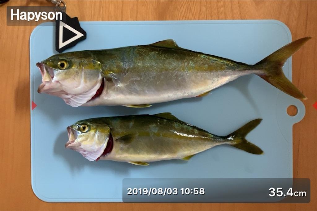 f:id:Kobe_Angler:20190804111037j:image