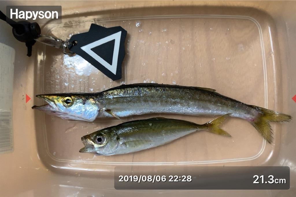 f:id:Kobe_Angler:20190808133736j:image