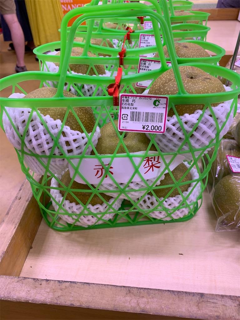 f:id:Kobe_Angler:20190811124053j:image