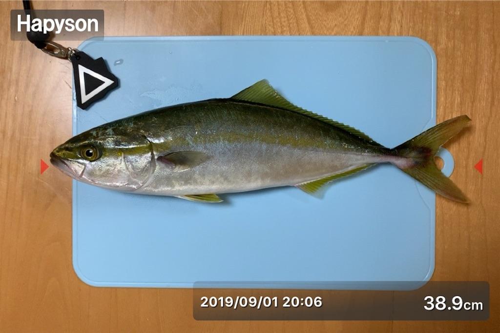 f:id:Kobe_Angler:20190904090442j:image