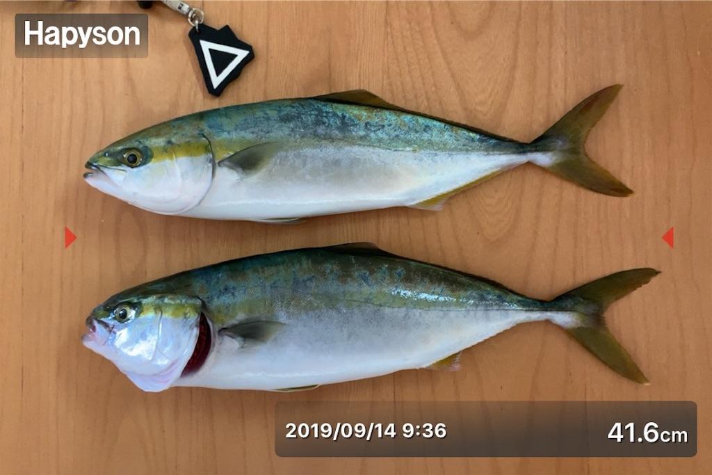 f:id:Kobe_Angler:20190915115750j:image