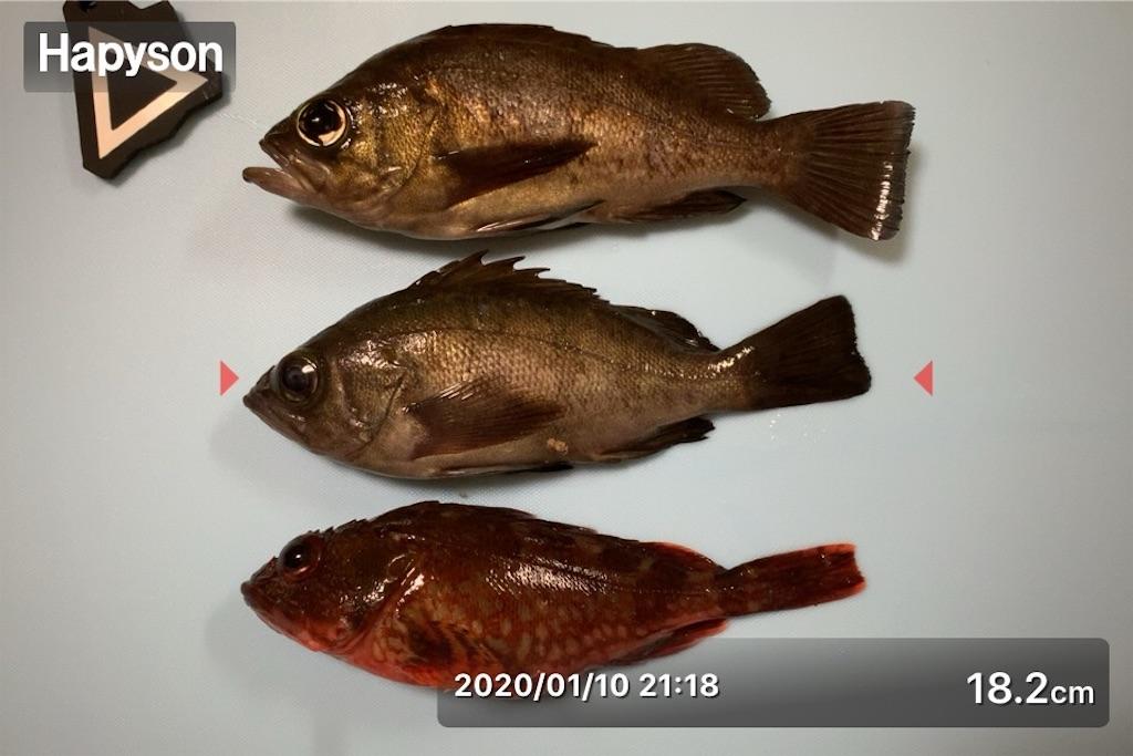f:id:Kobe_Angler:20200111115410j:image