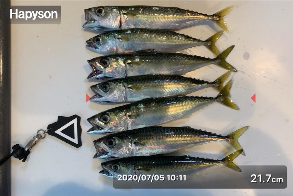 f:id:Kobe_Angler:20200712104647j:image