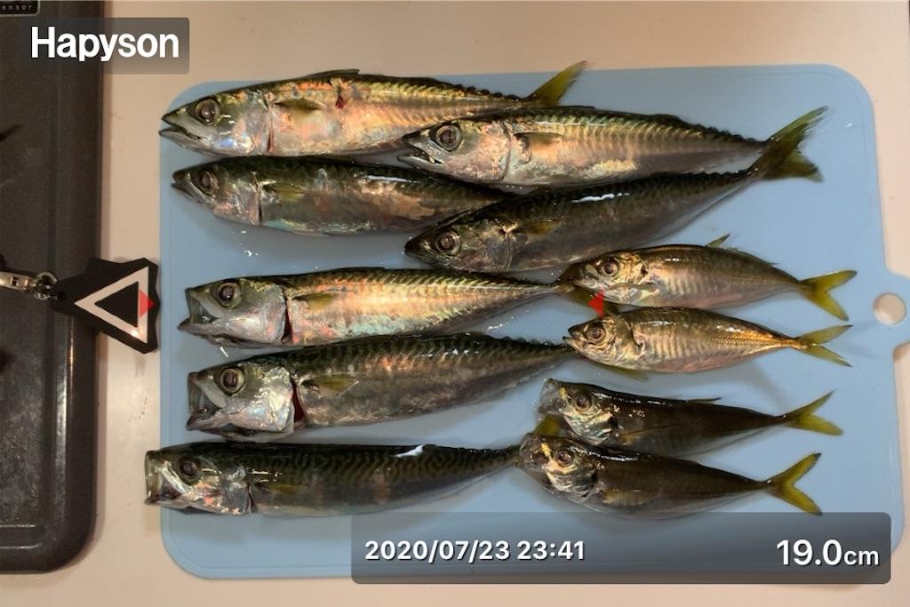 f:id:Kobe_Angler:20200724135923j:image