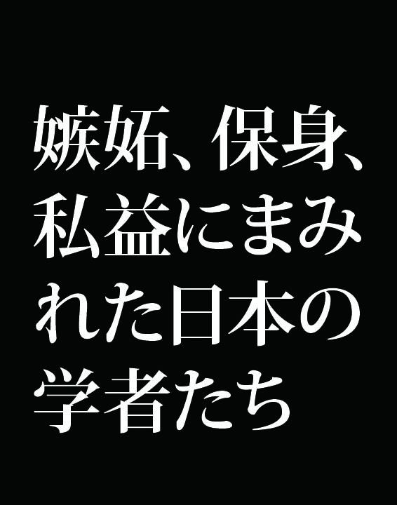 f:id:Kogarasumaru:20181221093951j:plain