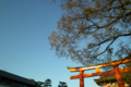 [Kyoto]