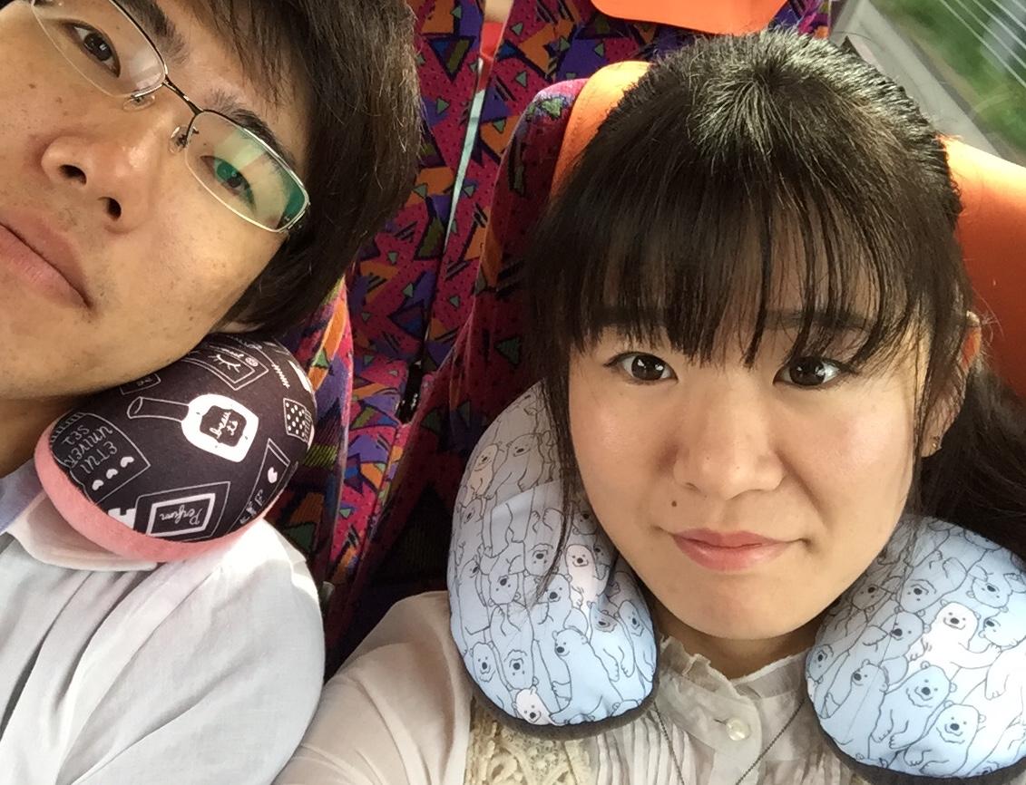 f:id:Komatsuzakiaya:20190329193324j:plain